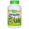 Natures Way Astragalus